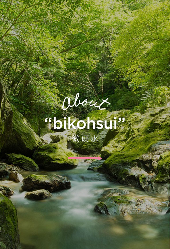 ABOUT bikohsui